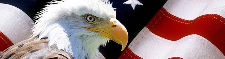 PMI z USA pozostaje mocny
