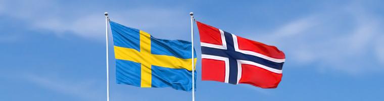 Wzrost bezrobocia w Szwecji