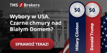 Wybory prezydenckie w USA [WEBINAR]