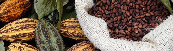 Kakao w cenie, kawa w niełasce