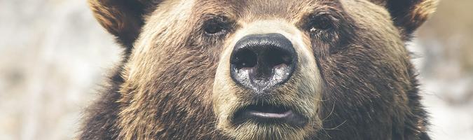 Drugi dzień spadków na rynku akcji