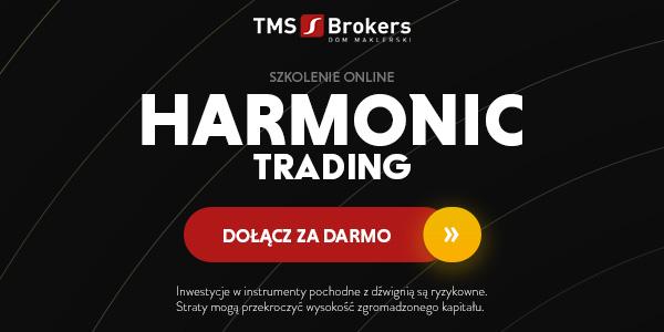 Investment University: szkolenie Harmonic Trading
